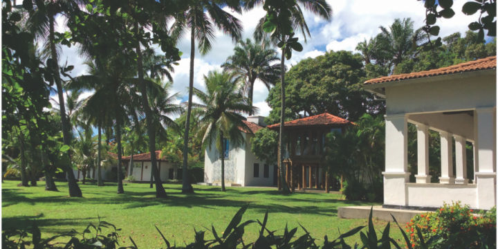 3rd artistic residency in Brazil offered to UK based artists