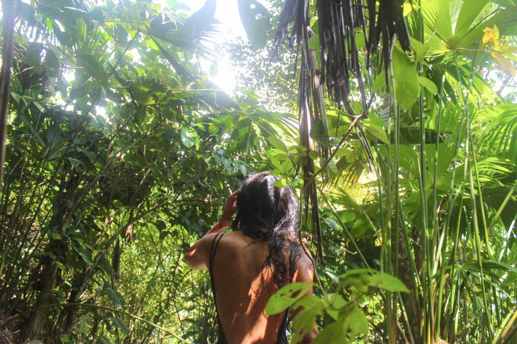 Tropic 8°N Residency